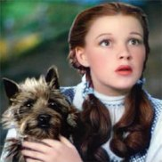 [emerald+dorothy+and+toto.pl]